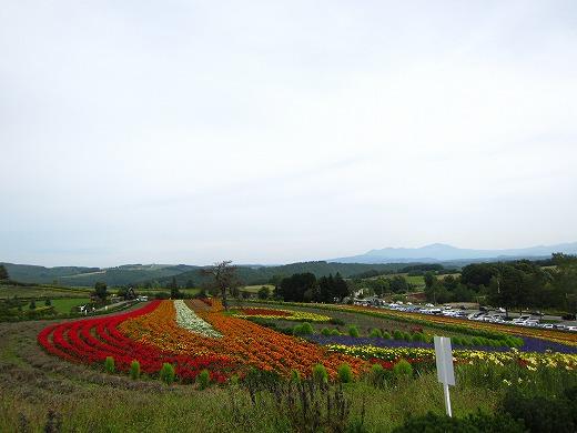 ぜるぶの丘 2