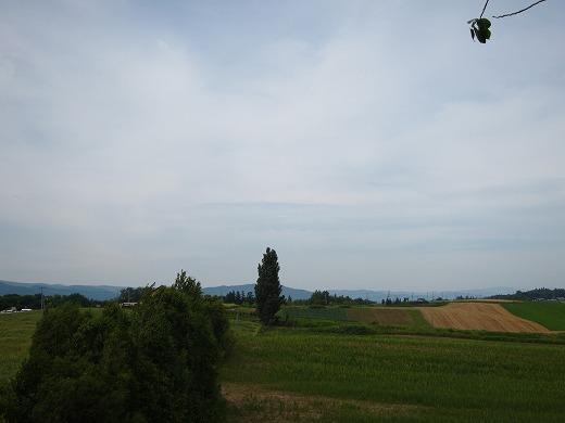 ぜるぶの丘 3
