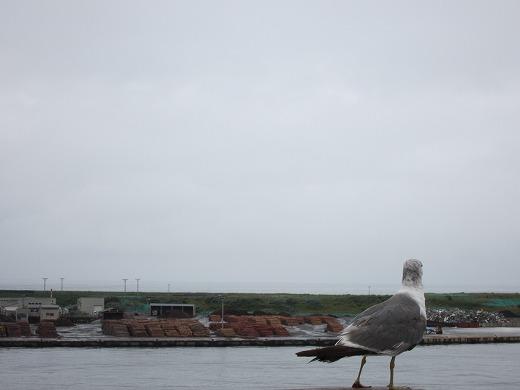 秋田港 2