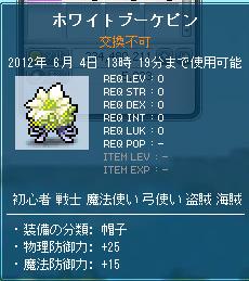 bandicam 2012-06-03 13-21-10-609