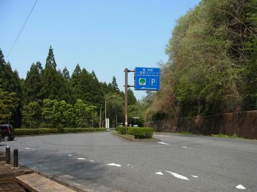 RIMG7028.jpg