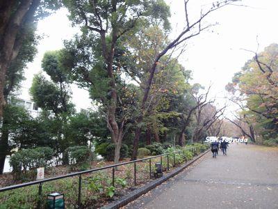 2014_1129_104303-DSC04315上野公園①