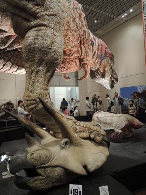 特別展「新説・恐竜の成長」
