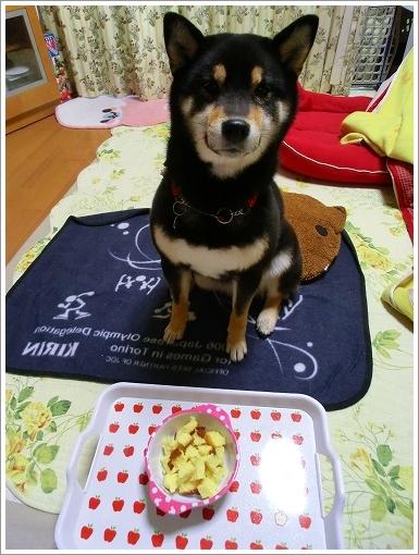 御犬カステラ (2)