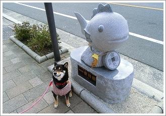 五日市コイン通り (11)