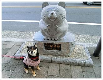 五日市コイン通り (13)