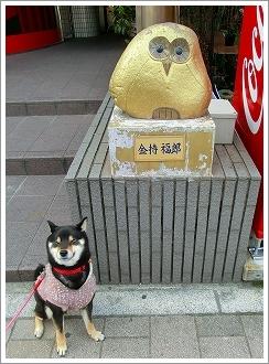 五日市コイン通り (21)