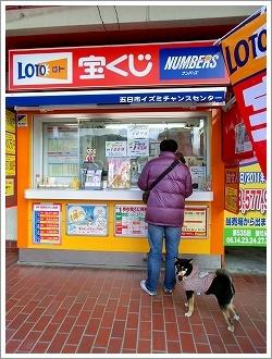五日市コイン通り (34)