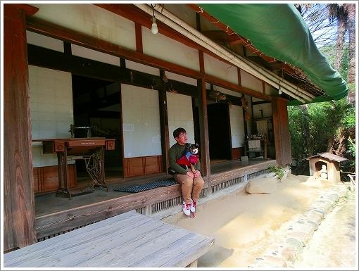 池田動物園 (10)