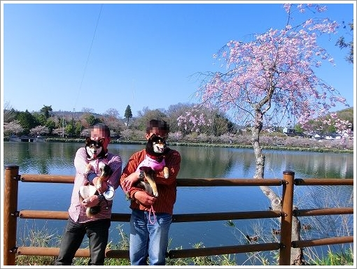庄原上野公園 (4)