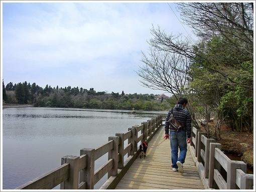 野呂山 (5)