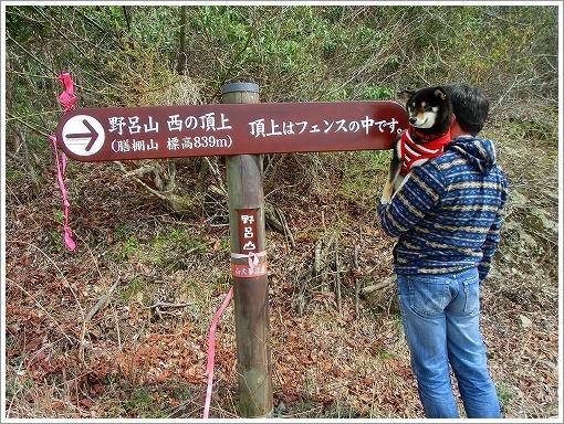 野呂山 (7)