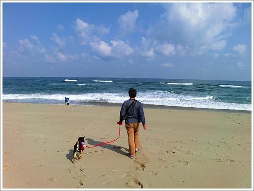 鳥取砂丘 (14)