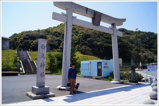 白兎神社 (1)