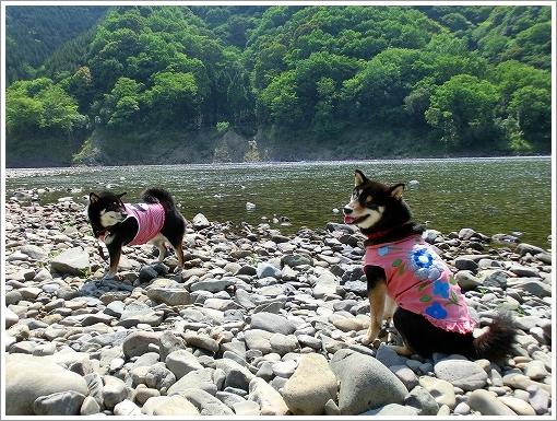 高知キャンプ3日目 (15)