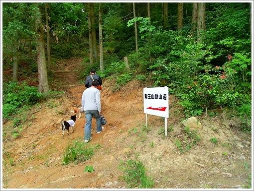恋文字公園 (21)