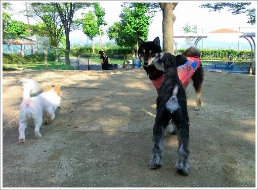 竜王公園 (3)