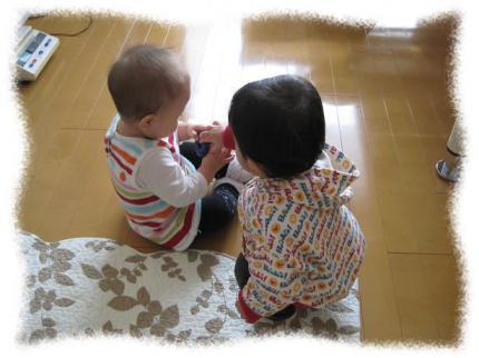 2012年11月14日Y&Y