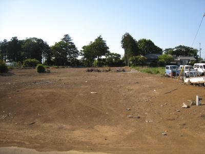 大角豆2012-154