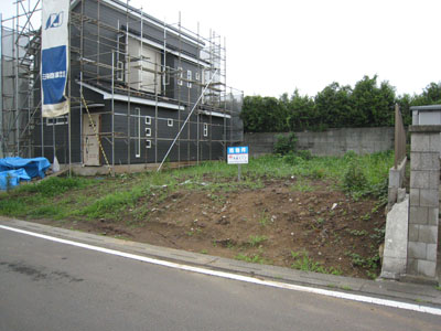 大角豆2012-588