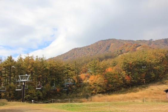紅葉のスキー場