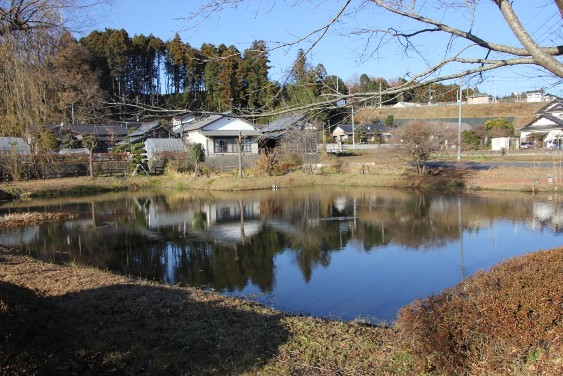 雪村筆洗いの池