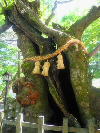 稲成神社  (3)