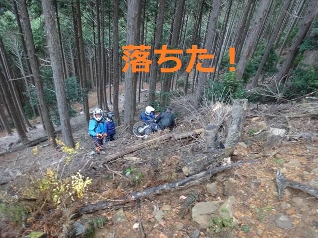 DSC03595.jpg