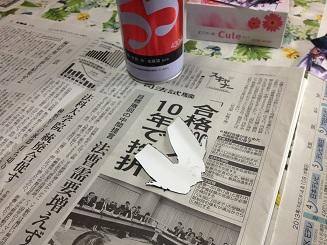 IMG_7974.jpg