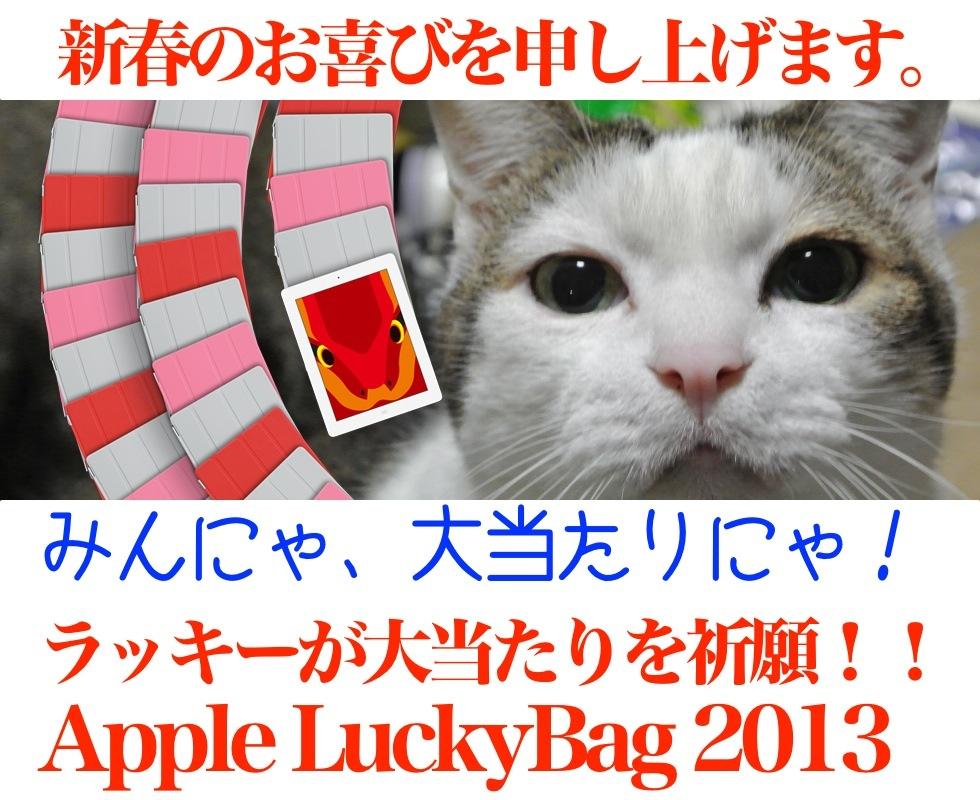 AppleLuckyBag2013Lucky2.jpg