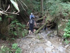 2012.7.23カトラ谷