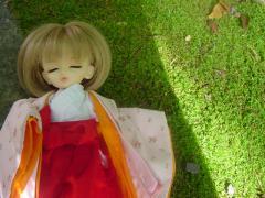 070526atutajingou_(064).jpg