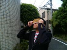 20120521-kinkan1.jpg