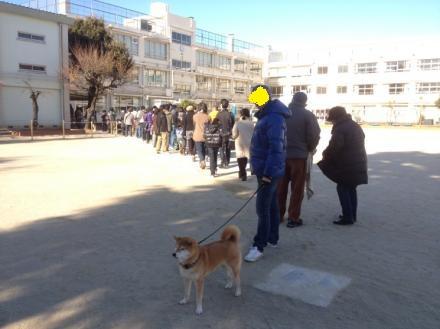 senkyo2012.jpg