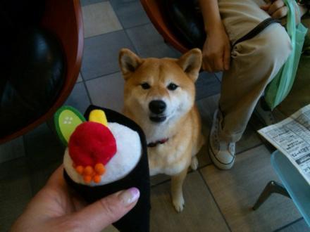 temaki-sushi.jpg