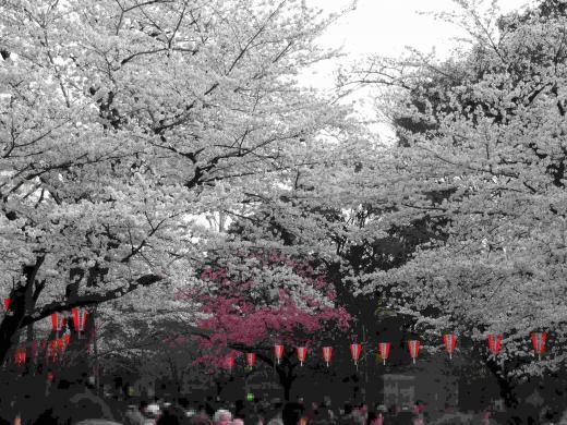 上野公園全体