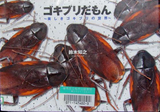 ゴキブリだもん