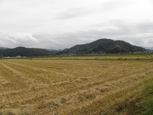 120930田園風景 (1)