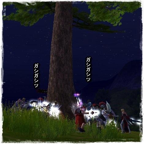 TODOSS_20130714_013223-1-03.jpg