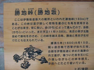IMG_6377.jpg