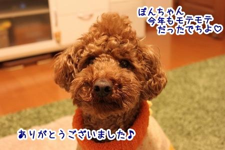 IMG_9947.jpg
