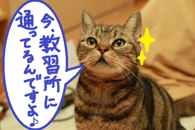 (1)_20130117114858.jpg