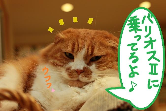 (4)_20130117114857.jpg