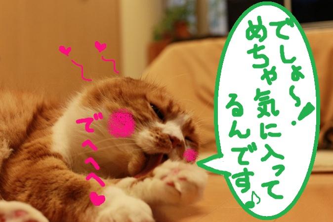 (9)_20130117115032.jpg