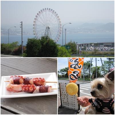 pageあわじ2011-1