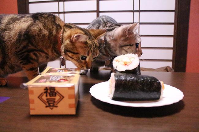 blog_0002046.jpg