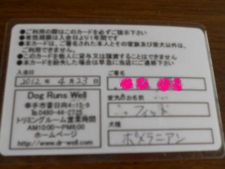 DSCN7607.jpg