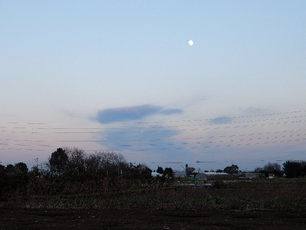 2014_01140007.jpg