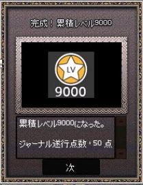 4631.jpg