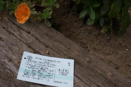 パワフル切符